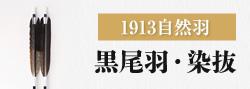 1913自然羽 黒尾羽・染抜