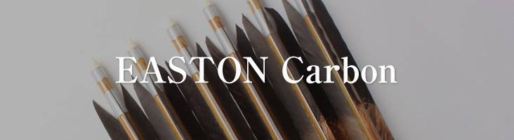 カーボン矢・イーストン ・Carbon Ya Easton